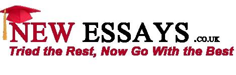 newessays.co.uk logo